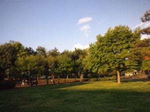DSC_0160_1.JPG