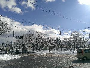 IMAG0938.jpg